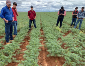 Sustainable No-Till Farming NSW